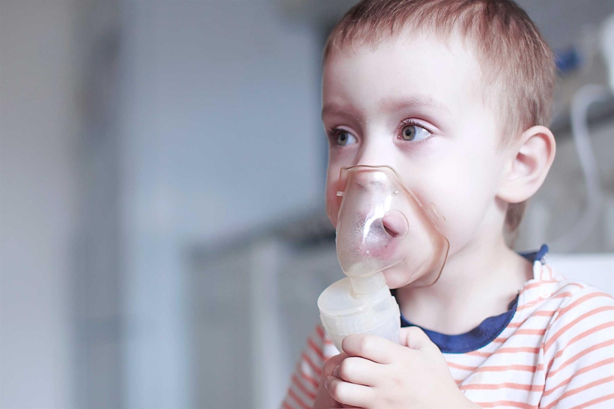 receitas de sopas para fortalecer a imunidade das crianças